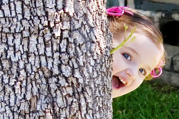 bambina montagna albero