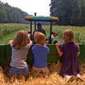 fattorie didattiche bambini