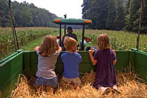 Nella vecchia fattoria… ia-ia-o. Gite per bambini nelle più belle fattorie didattiche d'Italia