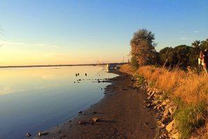 L'estate a Marina Romea: sabbia fine, mare limpido e natura incantata