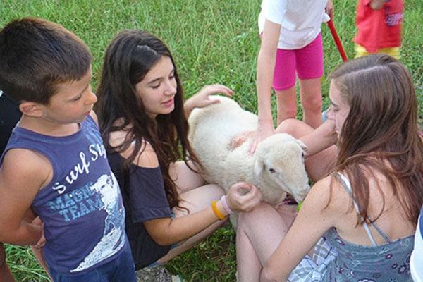 bambini animali fattoria