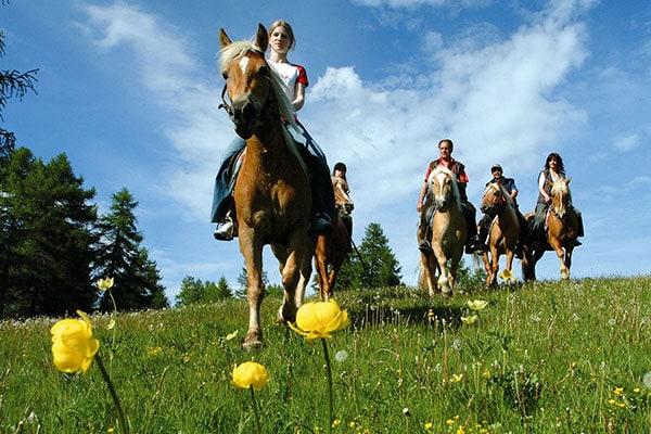 A bolzano coi bambini family travel blog for Cavalli bolzano
