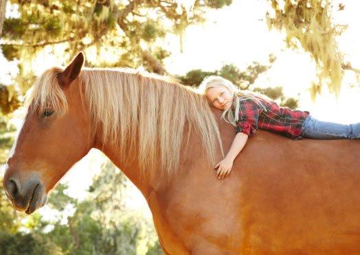 A Ischia sul Monte Epomeo a cavallo